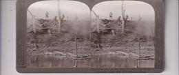 BOURON WOOD CANAL DU NORD  GUERRE WAR  WWI  Stéréoscopique Stéréoscope Carte Photo Stéréo - Photos Stéréoscopiques