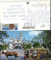 511344,Florida Orlando Walt Disney World Sleeping Beauty Castle Horse Streetcar - Ohne Zuordnung