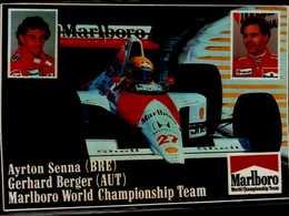 AUTOCOLLANT 15/11 CM.. MARLBORO WORLD CHAMPIONSHIP TEAM...AYRTON SENNA (BRE) / GERHARD BERGER (AUT) / - Autocollants
