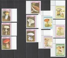 C678 1995,1997 GUINEE FLORA NATURE MUSHROOMS !!! 2SET MNH - Pilze
