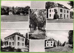39 / CHAMPAGNOLE - Château De La Berthe, Roger Brun Propr. (années 50) - Champagnole