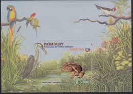 Upaep Paraguay HB23 2004 Ceratophrys Cranweli Pájaro Bird Fauna MNH - Zonder Classificatie