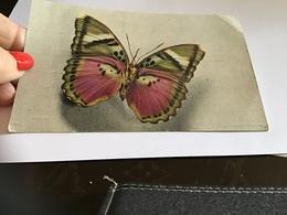 Papillon édité Par Le Comité National De L'enfance Paris En L état - Vlinders
