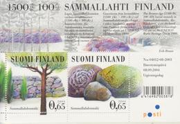 Finlandia 2004  Yvert Tellier  1687/88 Tumultos De Sammallahti / Hb 35 ** - Unused Stamps