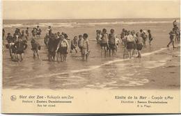Koksijde  - Coxyde S/Mer   *  Ster Der Zee - Etoile De La Mer - Zusters Dominicanessen - Aan Het Strand - A La Plage - Koksijde