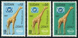 FAU1 Sudán  Nº 195/97  1967  MNH - Sellos