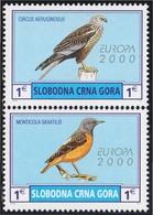 Montenegro SN 2000 Aves Pájaros Birds MNH - Sellos