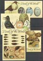 X664 2011 BEQUIA FAUNA BIRDS OF THE WORLD EGGS #752-9 !!! MICHEL 27 EURO !!! 2BL+2KB MNH - Uccelli