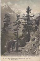 74 CHAMONIX MONT BLANC MULETIER SUR LE CHEMIN DE LA FLEGERE CARTE COLORISEE EDITEUR FRANCO SUISSE BF 1940 - Chamonix-Mont-Blanc