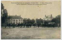 LANGRES Concour Agricole, Ecurie DONGOIS  De PEIGNEY 1910, Rare - Langres