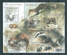 2008 Belgium Complete M/Sheet Marterachtigen,animals Used/gebruikt/oblitere - Blocs 1962-....