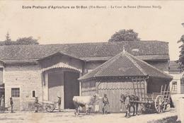 52 - Ecole D'Agriculture De SAINT BON - La Cour De Ferme Avec Animation - 2 Scans - Francia