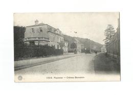 Pepinster  -  Château Bonvoisin (1914). - Pepinster