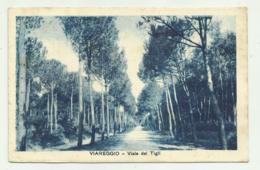 VIAREGGIO - VIALE DEI TIGLI VIAGGIATA FP - Viareggio