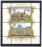 Belarus 2008 .Nesvizh Castle. S/S: 3000 + Label.   Michel # BL 62 - Bielorussia