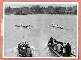 PHOTO PRESS - CANOTTAGGIO - BOAT RACE OXFORD 1954  - Cm. 21,5x16,5 - Sport