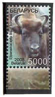 Belarus 2008 . Definitive. Bison. 1v: 5000.  Michel # BL 749 - Bielorussia