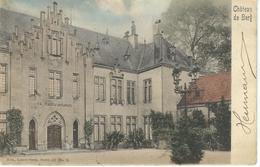 Chateau De BERG - Nels Luxembourg Série 10 N° 9 - RARE VARIANTE COLORISEE - Cachet De La Poste 1904 - Colmar – Berg