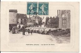 TRAINEL. LA ROUTE DE SENS. TROUPEAU DE MOUTONS - Sonstige Gemeinden