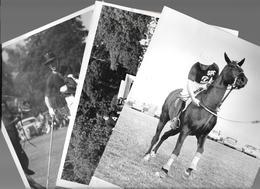 PHOTO PRESS - POLO HORSES CHEVAL - CM. 21,5X16,5 - Sport
