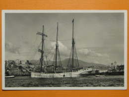 #61176, Genova, Port, Sailing Boat - Voiliers