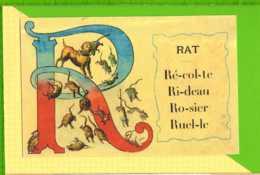 BUVARD & Blotting Paper : R Rat  Beau Graphisme - Animales
