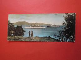 CPSM  Panoramique Grand Format   22 X 9 Cm. Vue Panoramique  MARTINIQUE. Paquebot à FORT  DE  FRANCE - Fort De France