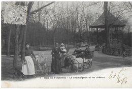 VINCENNES 94 VAL DE MARNE 6 BOIS DE VINCENNES LE CHAMPIGNON ET LES CHÈVRES ATTELAGE LANDAU  DOS NON DIVISE - Vincennes