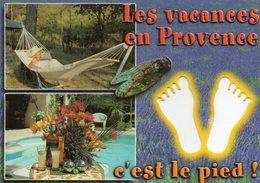 CPM - L - LES VACANCES EN PROVENCE C'EST LE PIED ! - CIGALE - LAVANDE - PASTIS - PISCINE - HAMAC - Provence-Alpes-Côte D'Azur