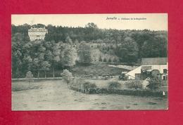 C.P. Jemelle =  Château  De La SAPINIERE - Rochefort