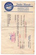 1936 YUGOSLAVIA, SLOVENIA, RADOVLJICA, JANO, COMPANY LETTERHEAD, SHEEP - Facturas & Documentos Mercantiles