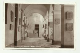 ALBA - R.LICEO GINNASIO GOVONE - MUSEO CIVICO    - VIAGGIATA  FP - Cuneo