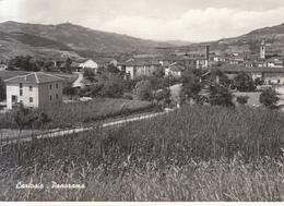 636 - Cartosio - Italia