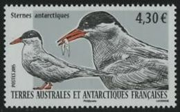 TAAF  2015 Oiseaux      CAT YT  N° 725  N** MNH - Unused Stamps