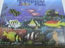 Grenada-Fish-Marine Life - Peces