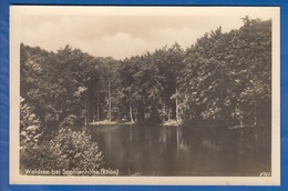 Deutschland; Waldsee Bei Sophienhöhe, Rhön - Unclassified