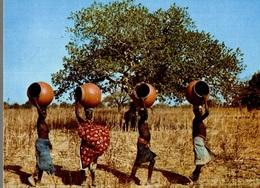 CPM République De Haute Volta Scène De Village : Femmes Allant Chercher De L'eau Au Puits - Burkina Faso