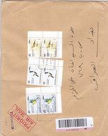 Lebanon-Liban Registr.cover Large Size,franked 2 Compl.set Pair Birds Of 3v. ( No Pauypal & No Skrill ) - Lebanon