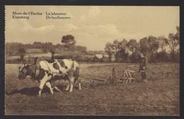 KLUISBERG * MONT-DE-L'ENCLUS * DE LANDBOUWER * LE LABOUREUR * PHOTO ALBERT - ORROIR  * GEANIMEERD * ANIMEE - Kluisbergen