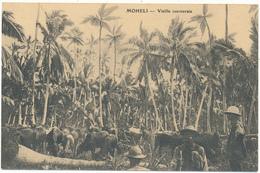 MOHELI - Vieille Cocoteraie - Comoren