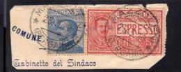 ITALIA REGNO ITALY KINGDOM 1903 1908 EFFIGIE RE VITTORIO EMANUELE ESPRESSO SPECIAL DELIVERY CENT 25 + 25c USATO USED - 1900-44 Victor Emmanuel III.