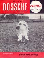 Tijdschrift - Landbouw , Voeders Dossche , Deinze - Verdeler Firmin Schepers Maria Aalter - 1962 - Ontwikkeling