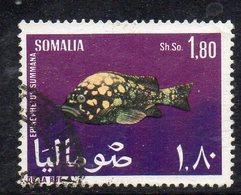 XP2926 - SOMALIA 1967 , 1 Som E 80 Cent Yvert N. 79 Usato  (2380A) - Somalia (1960-...)