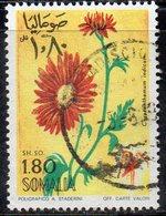 XP2938 - SOMALIA 1969 , 1 Som E 80 Cent Yvert N. 106 Usato  (2380A) - Somalia (1960-...)