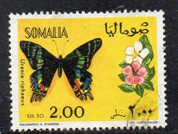 XP2942 - SOMALIA 1970 , 2 Som  Yvert N. 116 Usato  (2380A)  Farfalle - Somalia (1960-...)