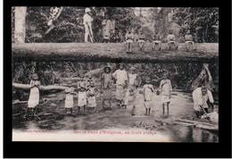 Congo Français Sur Le Pont D'Avignon , En Foret Vierge Ca 1910 Old Postcard - Congo Francés - Otros