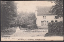 CPA -  Belgique, BOITSFORT, Entree De La Foret De Soignes - Watermael-Boitsfort - Watermaal-Bosvoorde