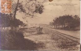 Cap Ferret  Les Pins Et La Dune De L'Ocean     1929 - Arcachon