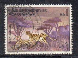 XP3107 - SOMALIA 1971 ,  Yvert N. 135  Usato  (2380A)  Leopardo - Somalia (1960-...)