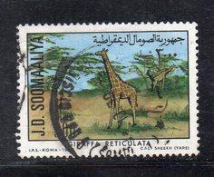 XP3373 - SOMALIA 1977 , Yvert N. 213  Usato (2380A) Giraffa - Somalia (1960-...)